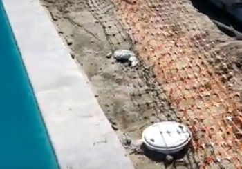 French Drain and Pool Yard Drainage System