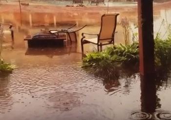 Yard Drainage for Yard Flooding - Oakland Twp., MI