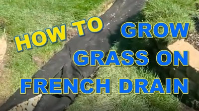 How to Grow Grass on French Drain