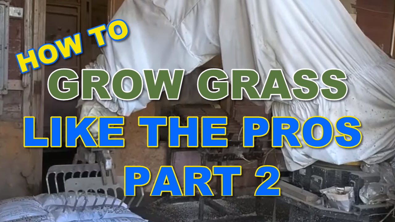 How to Grow Grass Like the Pros Part 2