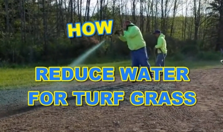 How to Reduce Water for Turf Grass